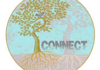 Fall 2016 Connect Groups