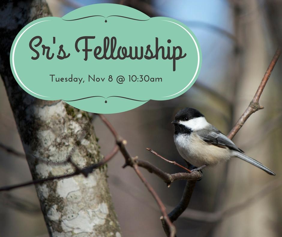 srs-fellowship-nov